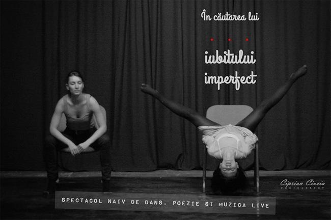 In cautarea iubitului imperfect
